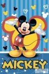 Plüss takaró Mickey egeres, 100*150