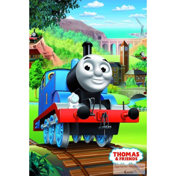 Polár takaró Thomas 100*150