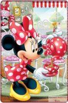 Plüss takaró Minnie egeres 100*150