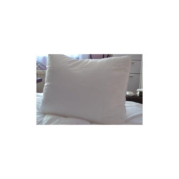 Microfibre-antiallergen-kisparna-40x50