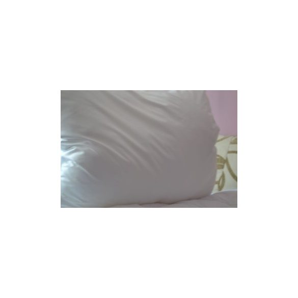 Microfibre-antiallergen-nagyparna-70x90