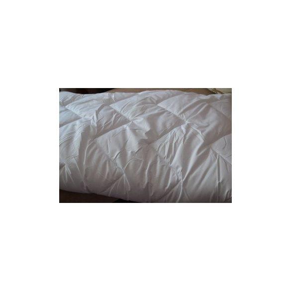 Microfibre-antiallergen-paplan-140x200